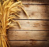 pic of harvest  - Wheat Ears on the Wooden Table - JPG