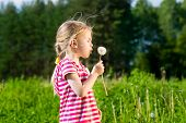 Cute Blonde Little Girl Blowing A Dandelion And Making Wish