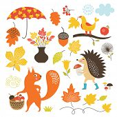 stock photo of cartoon animal  - Cartoon animals and autumnal elements - JPG