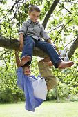 Full length of boys playing on tree branch in park