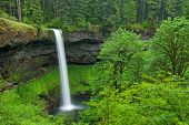 South Falls In The Silver Falls State Park, Usa