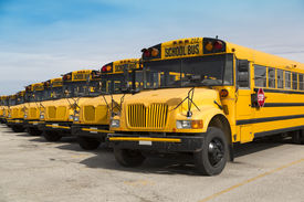 foto of lineup  - school buses parked in a parking lot - JPG
