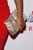 Gina Ravera's purse  at the 8th Annual Padres Contra El Cancer's 'El Sueno De Esperanza' Benefit Gala. Hollywood and Highland Grand Ballroom, Hollywood, CA. 10-07-08