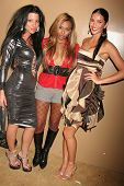 Tal Sheyn, Nicle Narain and CC Fontana  at the Birthday and Viewing Party for Fashion Designer Tal Sheyn, sponsored by Shoes for the Stars and Shoe String Ent., 24 Carat, West Hollywood, CA. 10-18-08