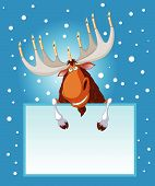 Hanukah moose