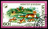 Vintage  Postage Stamp. Vulpes And  Puppy Of The Fox.  (red Fox).