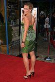 Elisabeth Rohm  at the Los Angeles Premiere of