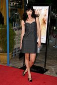 Krysten Ritter at the Los Angeles Premiere of
