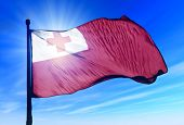 Tonga flag waving on the wind