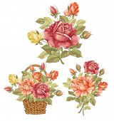 Set of three compositions luxury vintage watercolor roses.. Beautiful vector elements for your desig