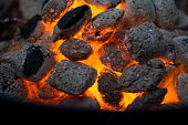 image of ember  - Embers of coal glowing in a grill - JPG