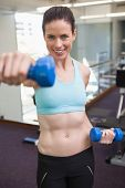 Fit brunette lifting blue dumbbell at the gym
