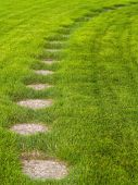 Stone Path Through A Green Grassy Lawn Background