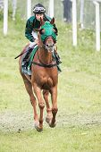 Woman Jockey Into A Curve At The Nationaldags Galoppen