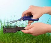 Cuting grass by hairdressing scissors
