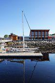 Docked Sailboats