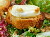Toasted Bread With Goat Cheese On Fresh Lettuche
