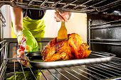 stock photo of roast duck  - Housewife prepares roast chicken in the oven - JPG
