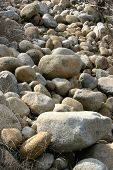 Field Of Rocks