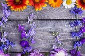 pic of wildflowers  - Beautiful wildflowers on wooden background - JPG