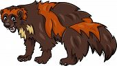 Wolverine Animal Cartoon Illustration