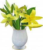 illustration with yellow lily in vase isolated on white background