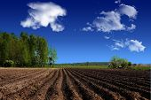 stock photo of plowing  - landscape agriculture plowed farmland in the country visible furrows after passage of plow - JPG