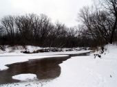 Eau Claire River-Winter