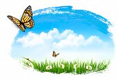 Nature background with butterflies. Vector.