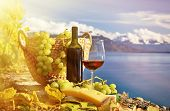 Red wine and grapes on the terrace of vineyard in Lavaux region, Switzerland, retro filter