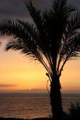 sunset in playa de las americas