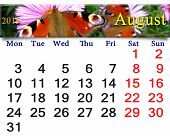 Calendar For August Of 2015 Year With Peacock Eye