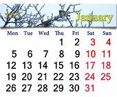 Calendar For January Of 2015 With Winter Sparrows
