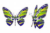 Blue Yellow Green White Paint Made Butterfly Set
