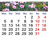 Calendar For October Of 2015 With The Pink Asters
