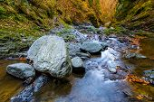 Landscape With Valea Lui Stan Canyon And River In Romania, In The Autumn