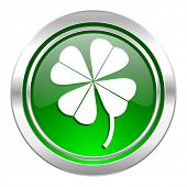 four-leaf clover icon, green button