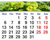 Calendar For The July Of 2015 With Flowers Of Tobacco-plant