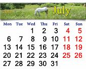 Calendar For The July Of 2015 With Horse In The Summer Field