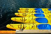 Yellow canoes kayaks 5 pieces are on the water attached to the shore shrouded tied a rope to the cas