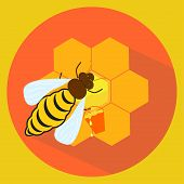 Illustration Of Bee And Honeycombs