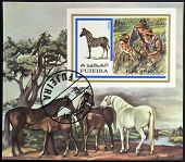 FUJEIRA - CIRCA 1972: A stamp printed in Fujeira shows boy scouts and zebra circa 1972