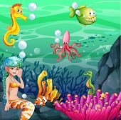 Wallpaper with colorful underwater theme
