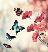 foto of butterfly flowers  - Digital Painting Of Flowers And Butterflies - JPG