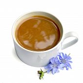 pic of chicory  - Chicory drink in a white cup - JPG
