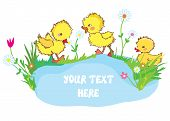 picture of duck pond  - Banner with ducks pond and flowers  - JPG
