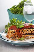 picture of lasagna  - Vegan lasagna with tomato sauce - JPG