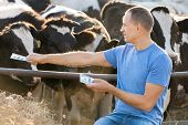 stock photo of cash cow  - Men with money on a cow farm - JPG