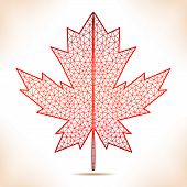 picture of canada maple leaf  - Geometric interpretation of the red maple leaf - JPG