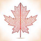 image of canada maple leaf  - Geometric interpretation of the red maple leaf - JPG